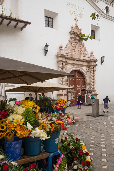 Flower market outside Carmen de la Asuncion Church, Cuenca, Ecuador