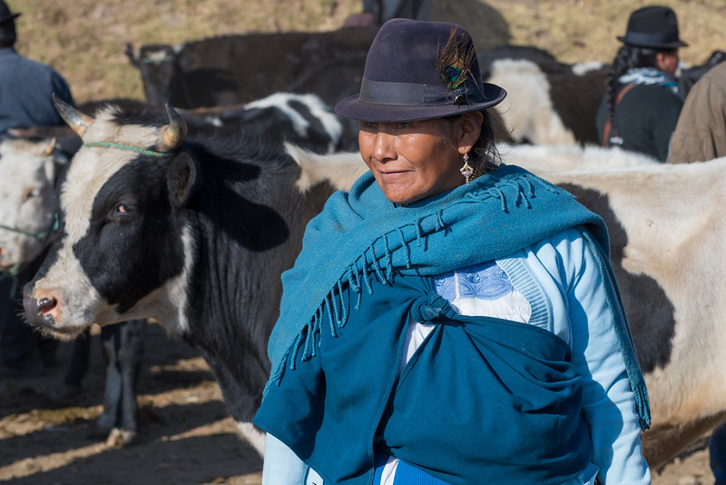 Woman and cattle, animal market, Otavalo, Ecuador