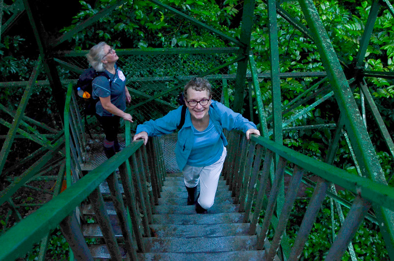 Climbing the canopy tower