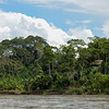 Along the banks of the Napo River