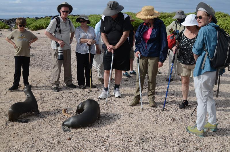Group on beach at Punta Suarez