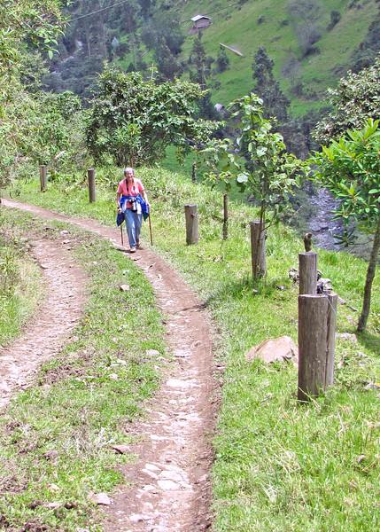 3/8/16 - Susan hiking.