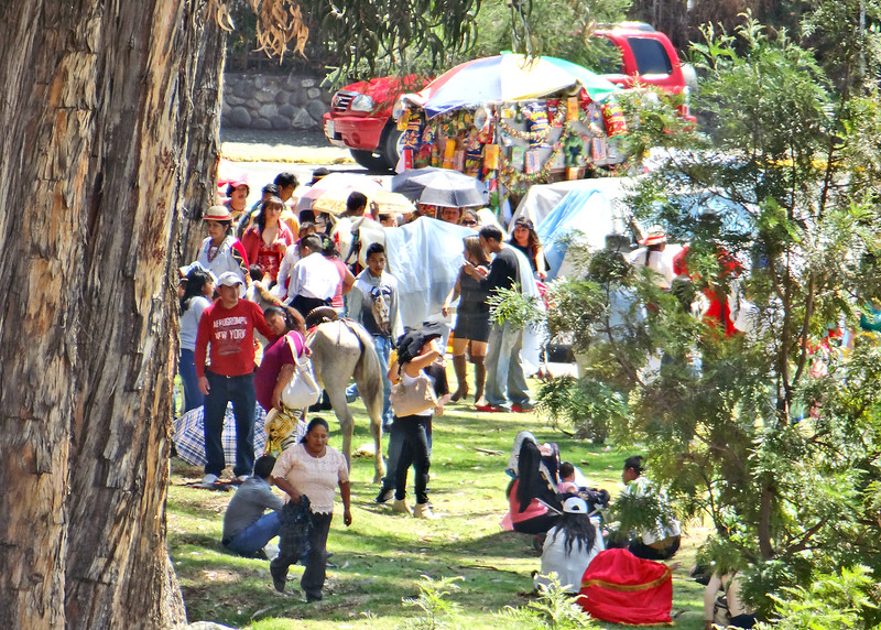1/10/16 - We love all the activity that goes on in Cuenca and the fact we can see much of it from our apartment. There was a parade, for what reason I don't know, that went  along 12 de Abril and just pulled up and stopped for about 30 minutes under the trees along the Rio Tomebamba. This is a view from our kitchen window.