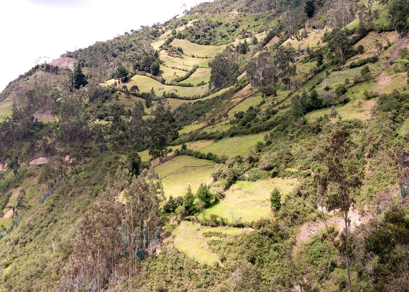 1/12/19 - We sept one afternoon just looking around the dairy. This is what the hillsides around Hacienda Chan Chan look like.