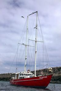 Our live aboard for a week, the enchanted - Encantada schooner