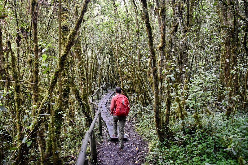 Cajas, Azuay, Ecuador