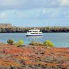 The M/Y Letty is anchored while guests hike on South Plaza with their naturalist guides.