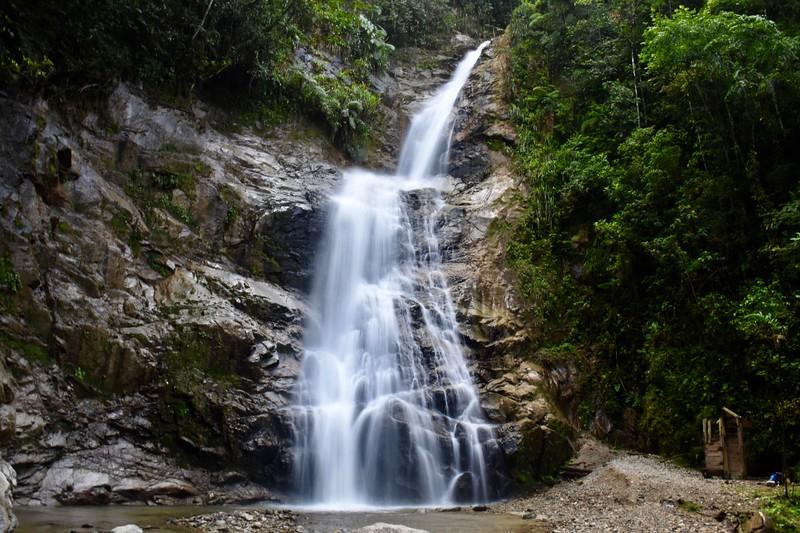 Podocarpus, Zamora Chinchipe, Ecuador