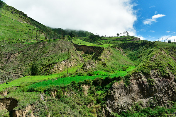 Lush Green in mountains