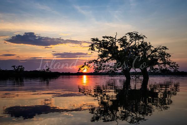 Amaozon sunset 3