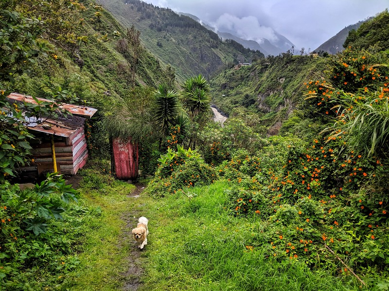 Picturesque Ecuador.