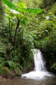 Mindo, Ecuador
