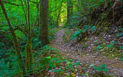 Silverton Trail