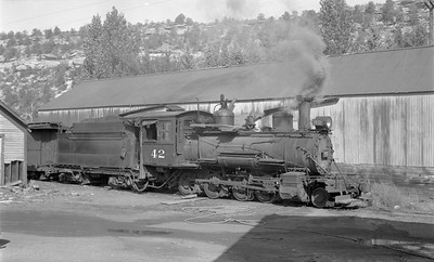 2018.15.N49K.5942--ed wilkommen 116 neg--RGS--steam locomotive 2-8-0 42--Dolores CO--1952 0915