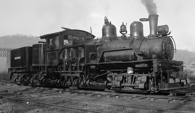2018.15.N64.2556N--ed wilkommen 116 neg--Brimstone--3-truck Shay steam locomotive 36--New River TN--no date