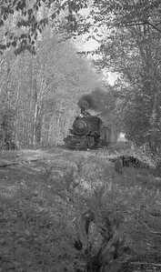 2018.15.N64C.7873--ed wilkommen 116 neg--EJ&S--steam locomotive 2-6-0 6 on mixed train action--location unknown--no date