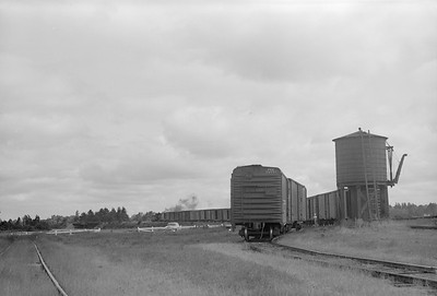 2018.15.N64.2819--ed wilkommen 6x9 neg--MT&W--steam locomotive 2-6-0 19 with string of cars in yard scene--Tomahawk WI--1952 0828