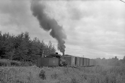 2018.15.N64.2815--ed wilkommen 6x9 neg--MT&W--steam locomotive 2-6-0 19 pulling freight cars on mainline near Wisconsin dam action--near Tomahawk WI--1952 0828