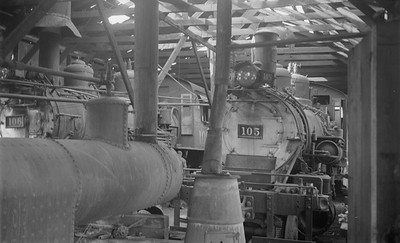 2018.15.N64.2933--ed wilkommen 116 neg--San Luis Valley Southern--steam locomotives inside enginehouse--Blanca CO--no date