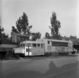 2018.15.N49K.5937B--ed wilkommen 120 neg--RGS--Galloping Goose 3 at Knotts Berry Farm--Buena Park CA--no date