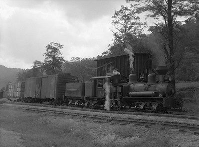 2018.15.N64L.8225--ed wilkommen 3x4 neg--Ely-Thomas Lumber Co--Shay steam locomotive 2 with freight cars--Fenwick WV--no date