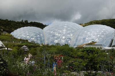 The Biomes (2)