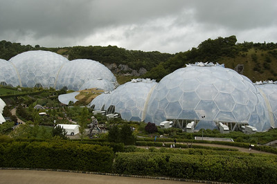 The Biomes (1)