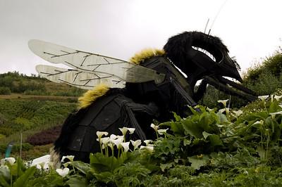 Giant Bee (2)