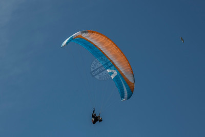Edgewater Paragliding 0109