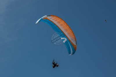 Edgewater Paragliding 0113