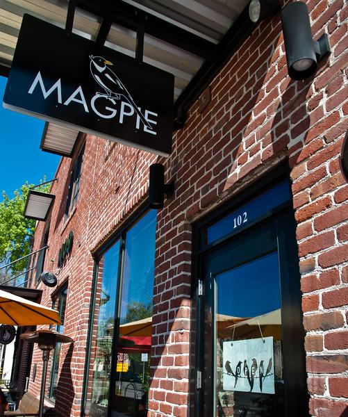 Magpie-0003