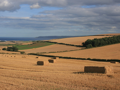 East Lothian Landscape from Doon Hill.