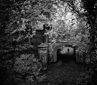 Under The Bridge, Warriston Cemetary, Edinburgh.