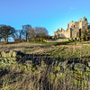 Craigmillar Castle in the Sun