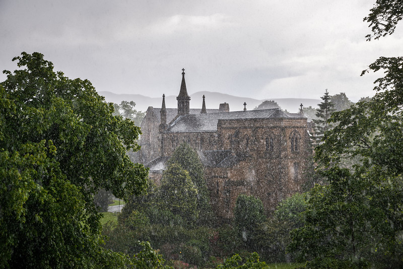 Rainy Day in July
