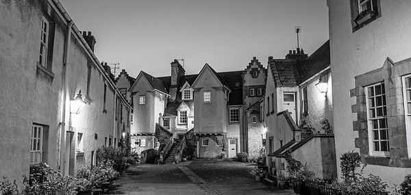White Horse Close in Black and White