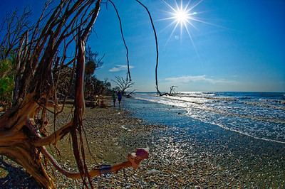 Edisto Island. South Carolina