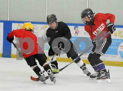 ice hockey_3199