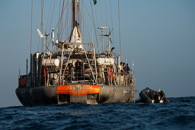 TARA OCEANS EXPEDITION - DJIBOUTI 2010