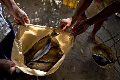 Pêcheurs de Rodrigues