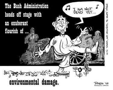 November 22, 2008 Hap Pitkin Editorial Cartoon DailyCamera.com Boulder, CO