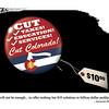 Jan. 17, 2010<br /> John Sherffius Editorial Cartoon<br /> Dailycamera.com, Boulder, CO