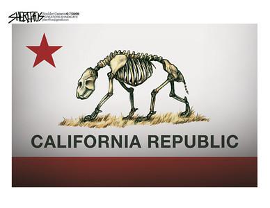 July 30, 2009<br /> John Sherffius Editorial Cartoon<br /> Dailycamera.com Boulder, CO