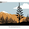 May 21, 2009 John Sheriffus Editorial Cartoon - DailyCamera.com Boulder, CO<br /> The national park disservice