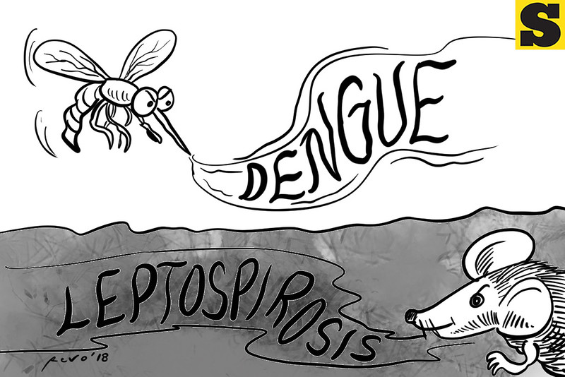 SunStar Bacolod editorial cartoon on dengue and leptospirosis