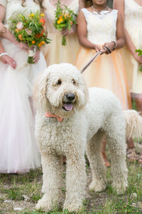 EnloeWedding-July2014-Laura-099