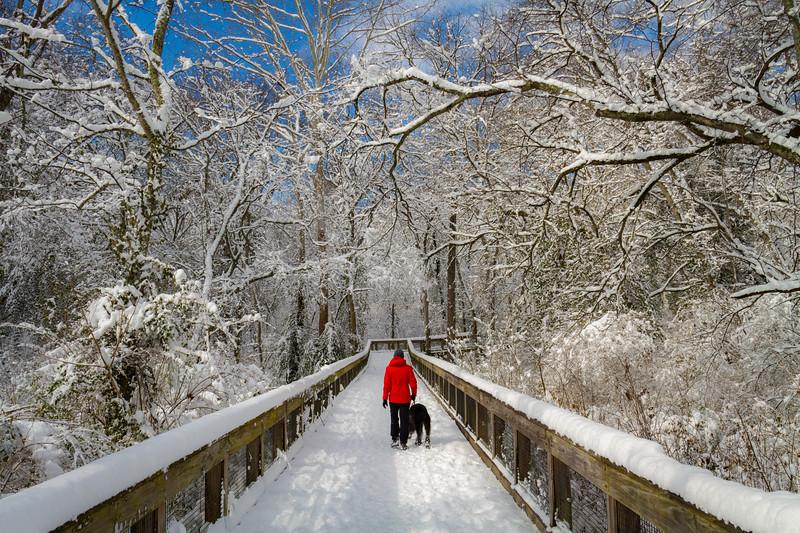 Richland Snow Walk