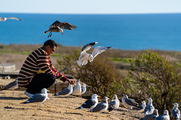 Bird Man.