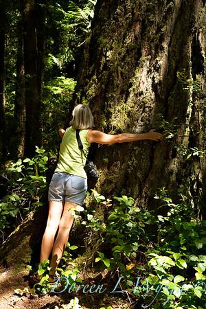 Tree hugger_001