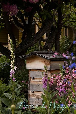 Bee hive box cottage garden_1648